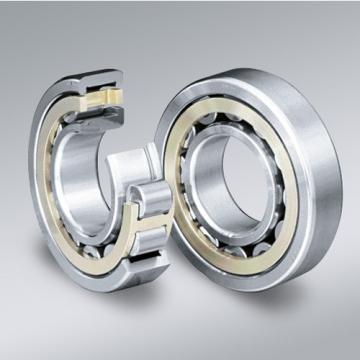 FAG 6009-2Z-C3  Single Row Ball Bearings
